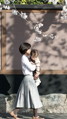 japan cherry blossoms mother child