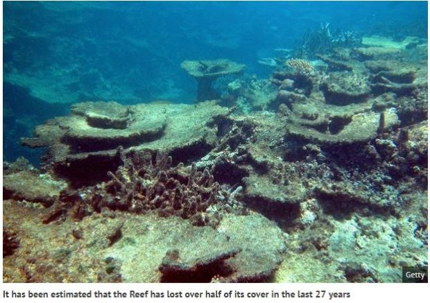 great-barrier-reef-damage