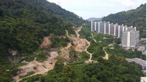 penang-hillside-site-destruction-2