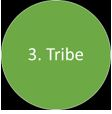 six-circles-3-tribe