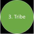 six-circles-3-tribe